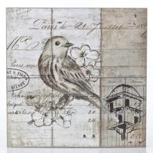 Pássaro Branco- Quadros Natureza