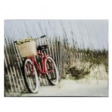 Bicicleta Vermelha - Quadro